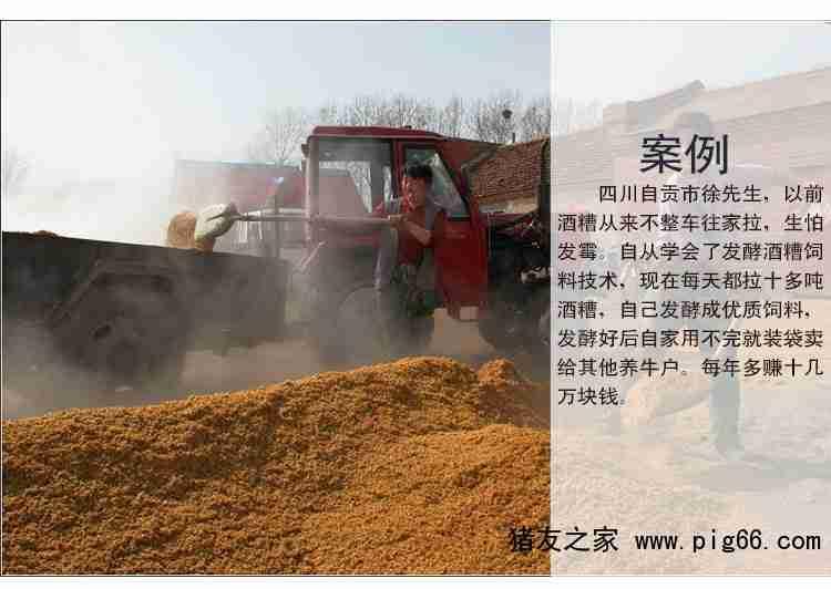 蜂蜜v蜂蜜喂酒糟法酒糟发酵剂肥牛保鲜剂做酸奶酒糟图片