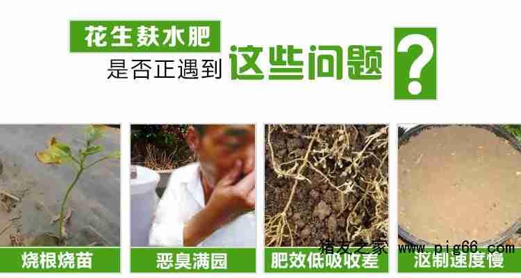 花生麸水肥常见问题