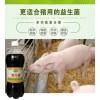 使用养猪益生菌养猪预防猪拉稀长的快