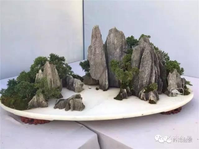 凉都画廊   石灰石 、真柏   第九届中国盆景展   优秀奖作   狼山易水情