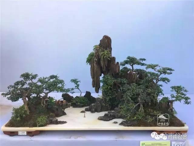 石   第九届中国盆景展   铜奖   作品   凉都画廊   石灰石 、真柏   第九届