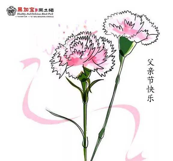 简笔画花 送给妈妈的康乃馨 简笔画花