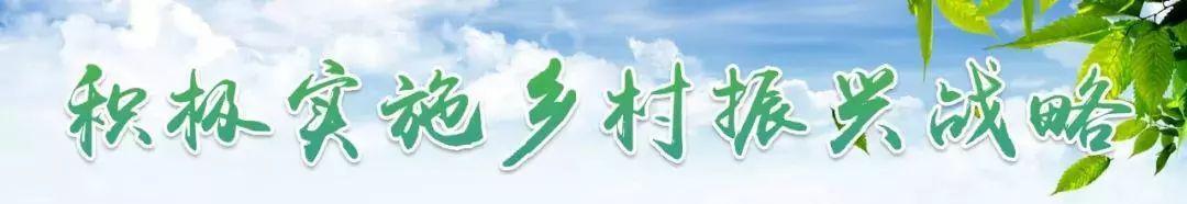 """振兴动态 听瑞安农创客讲创业故事 杨梅""""吃""""蜂蜜 瘦肉丸成""""网红"""""""