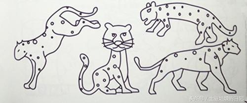 土豆姑娘的日记027 简笔画之森林里的动物朋友们3 蜗牛恐龙