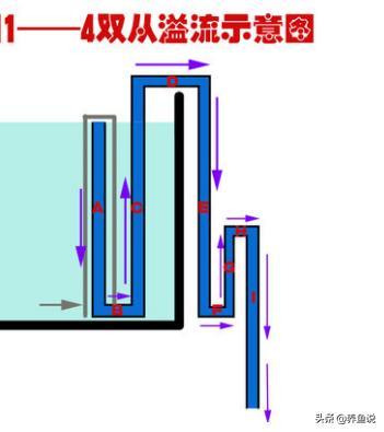 鱼缸下部过滤的原理_鱼缸底过滤系统原理