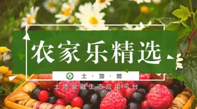 农家乐精选|安徽省合肥市岗集镇80亩农家乐出租