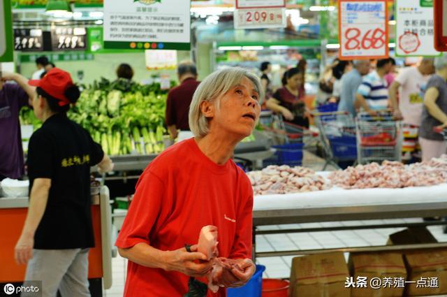 2019.08.26,全国主要农贸市场鸡蛋价格行情,长治、怀来、青岛等