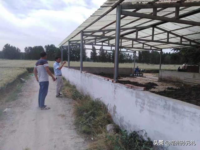亳州谯城一位基层的畜牧技术人员?谈如何振兴养猪业