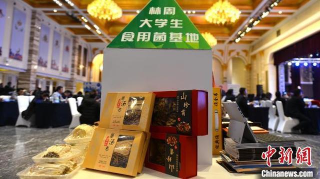 西藏拉萨官方鼓励青年创业追梦