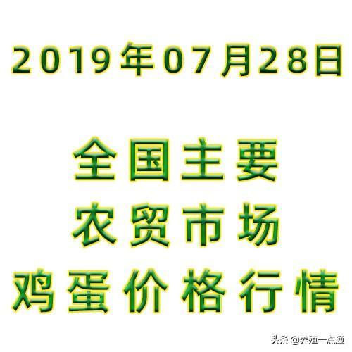 2019.07.28,全国主要农贸市场鸡蛋价格行情,成都、苏州、北京等