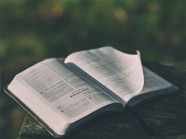 深刻走心的朋友圈说说,句句正能量,读读醒悟人生
