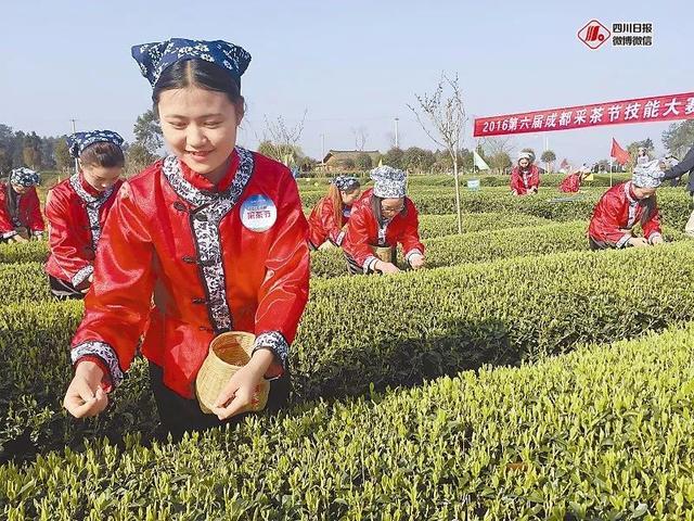 四川拟推60个优秀农产品和区域品牌,来看看广安特产上榜了几个?