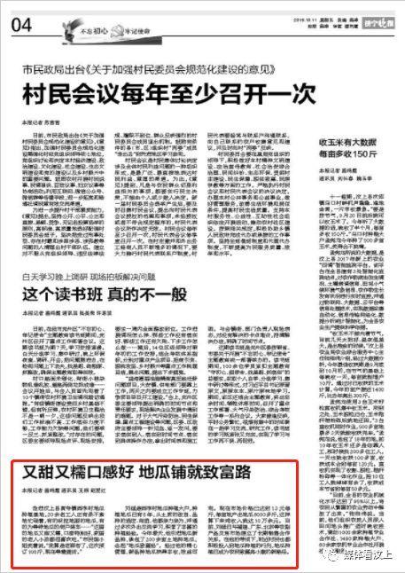 济宁晚报 10月11日 寅寺镇:又甜又糯口感好 地瓜铺就致富路