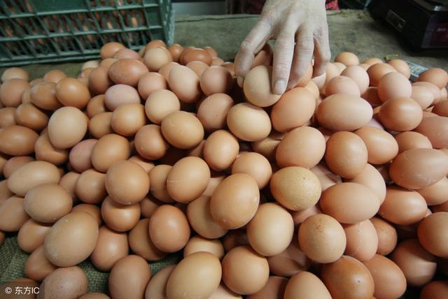 9月14日行情日评:猪价整体回落局部大涨,鸡、蛋价格高位回落