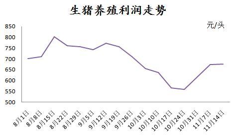 连跌两个月的母猪价格上涨!这是什么信号?
