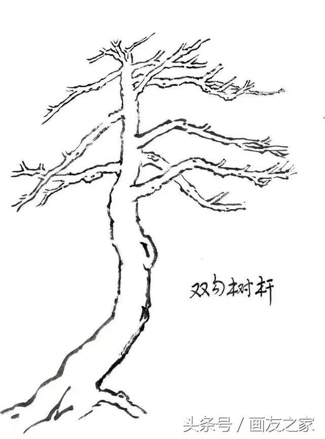 调中等墨色笔尖蘸浓墨侧锋皴擦松树干纹理, 即画鱼鳞皴,鱼鳞皴要有大有小、虚实的变化,不宜过大,否则树干会显得松散.