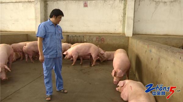 常州加强猪肉市场监管 确保上市肉品质量安全