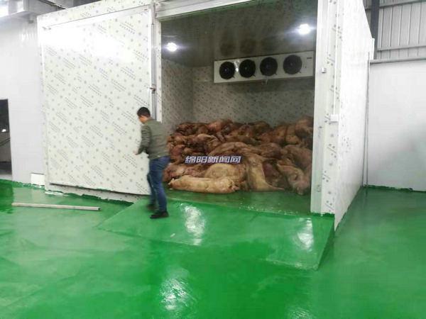 专人收集、专车运输……绵阳病死畜禽无害化处理中心建成