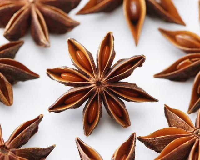 广西有种特产叫八角,全身都是宝,在百色、防城港等地都有种植