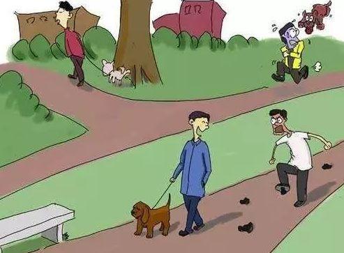 """荆门""""最严""""养犬条例开始实施!养狗人请不要这么做..."""
