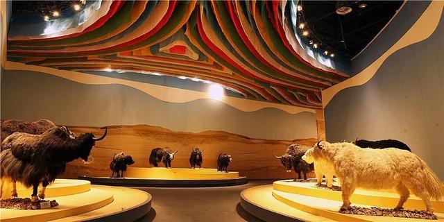 易途旅游:西藏牦牛博物馆11月1日起闭馆5个月