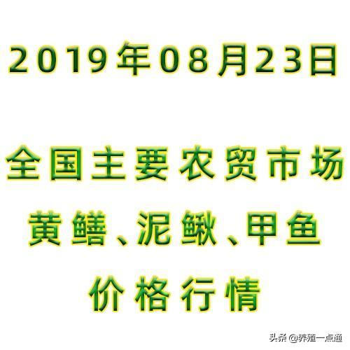 2019.08.23,全国主要农贸市场黄鳝、泥鳅、甲鱼价格行情,常州等
