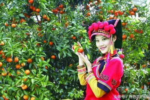 春节到百色旅游有什么特产可以带回家?这份清单请收好