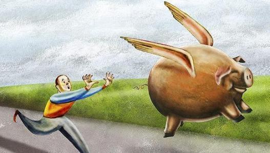 为什么说:2020年生猪价格难下跌,而又可能下跌?不矛盾吗?