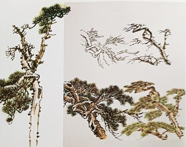 国画技法 松树的各种画法 图解