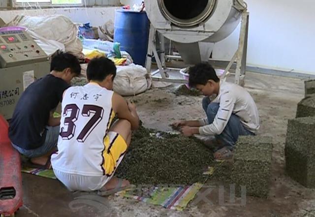 广南这个合作社招教程?童工人性图片