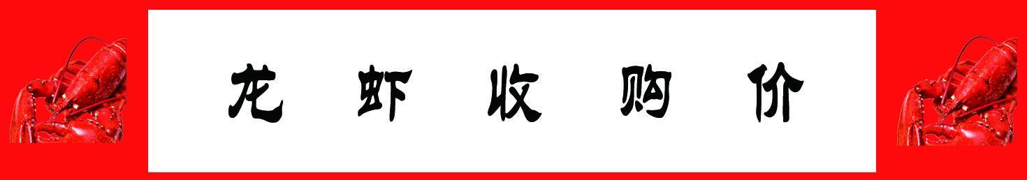 11月5小龙虾报价单:监利、潜江、盱眙、兴化、荆州、荆门等