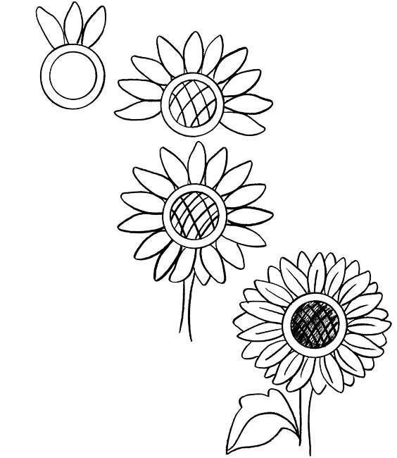 拿起笔就能画,适合零基础学习的花卉简笔画教程