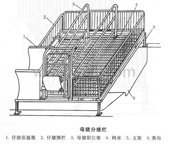 母猪分娩栏 (1)
