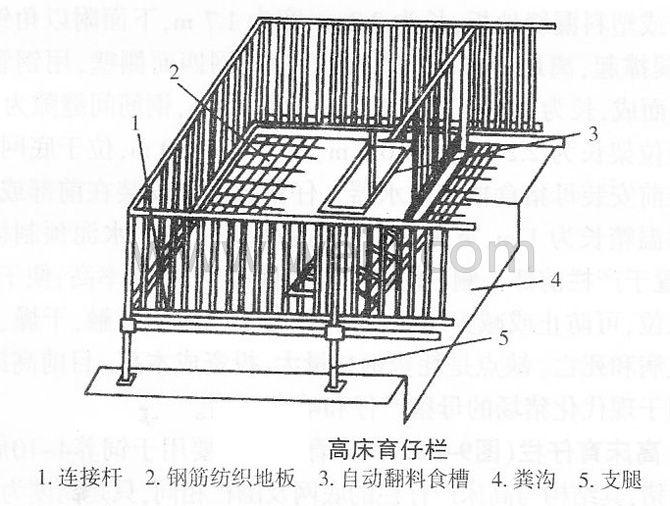 养猪高床育仔栏 (1)