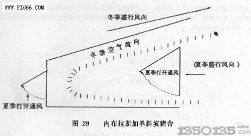 猪场房顶设计图