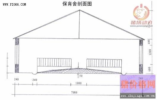 百头母猪自繁自养的猪场建筑设计图