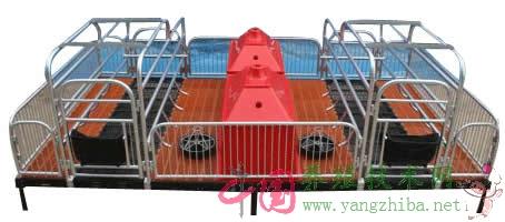 母猪产床尺寸规格设计图片_母猪产床价格_母猪产床视频_母猪分娩床