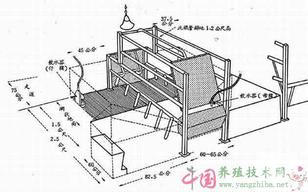 母猪产床尺寸规格设计图片_母猪产床价格_母猪产床视频_母猪分娩床图片