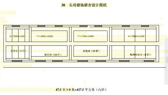 30头母猪猪舍设计方案(图)