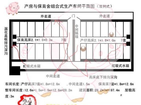 母猪猪场设计图