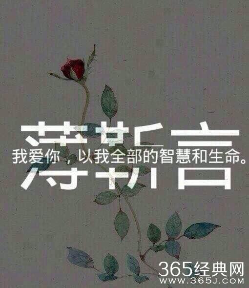 {他来了请闭眼薄靳言经典台词}.