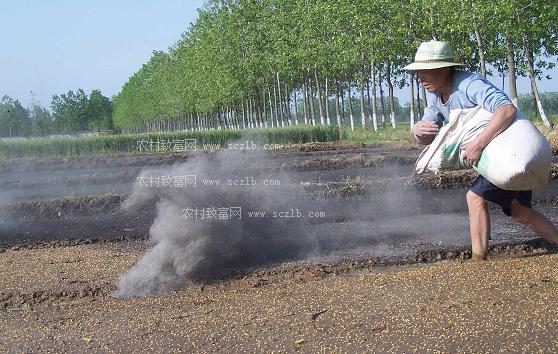 用方法_草木灰的施用方法,草木灰是什么