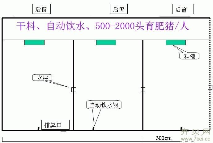 猪场具体的设计建设过程(图)图片