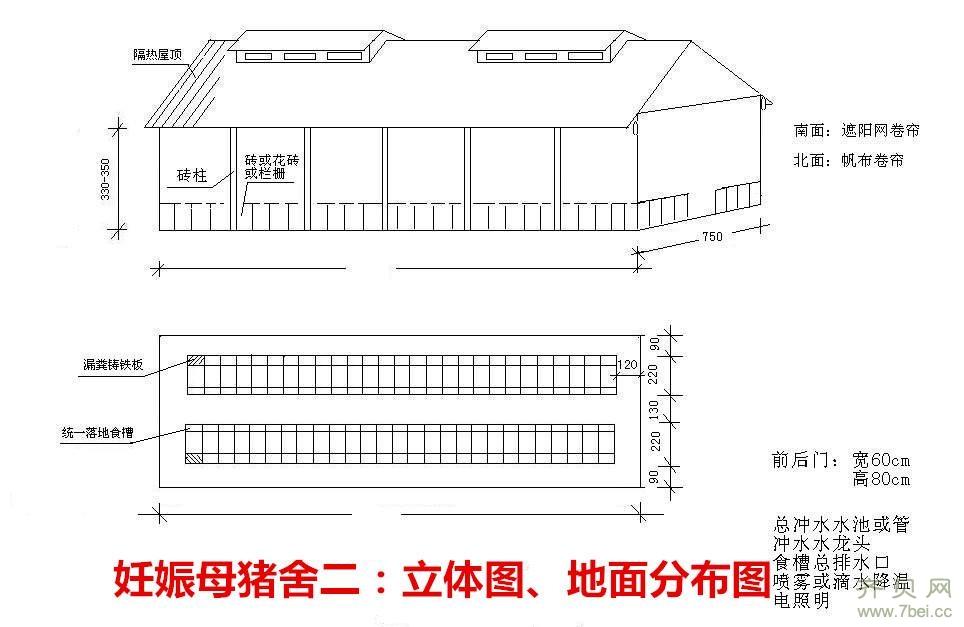 图纸规模化养猪场设计方案-全套建设字体设计猪场说明100字图片
