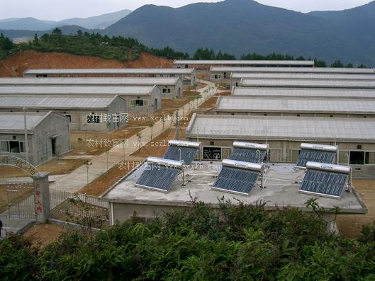 养猪场建筑设计普遍存在9大问题,养猪场的规划设计