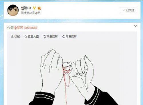刘翔微博晒牵手漫画低调公布恋情 女友吴莎个人资料微博