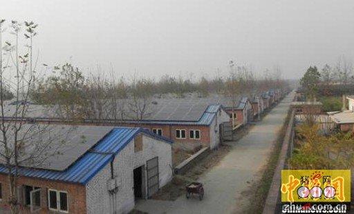 猪舍屋顶安装有太阳能电池组件的国香现代化生猪养殖基地.