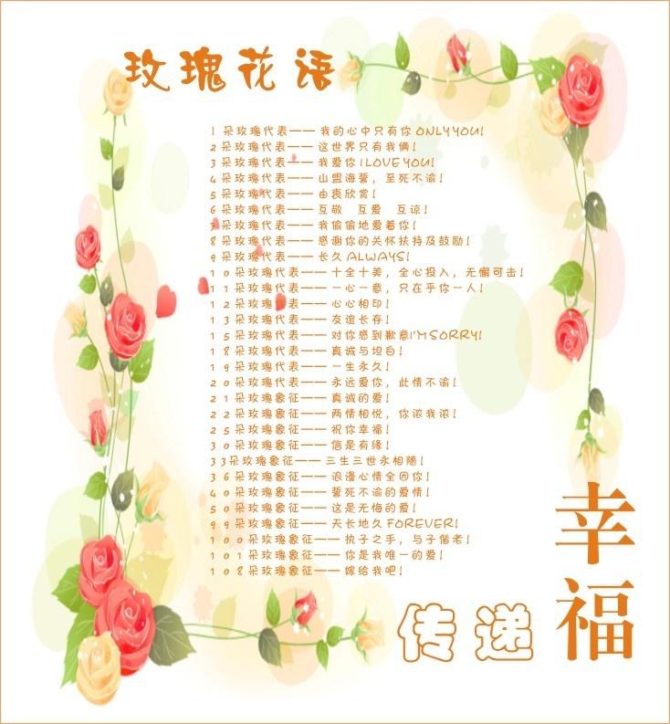 不同颜色的玫瑰花的花语分别代表什么