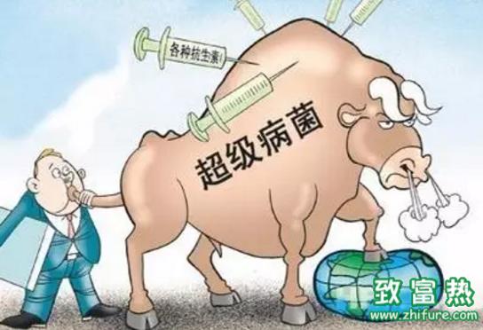 养殖业该不该禁用抗生素?