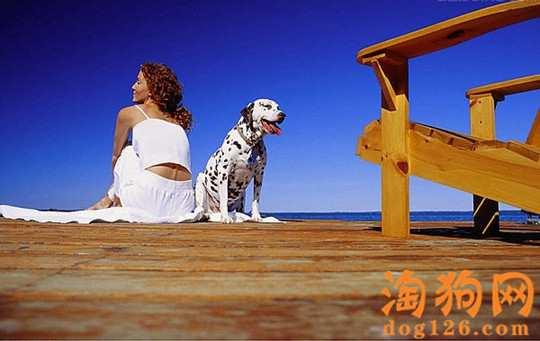 如何看出狗狗处于亚健康【图】